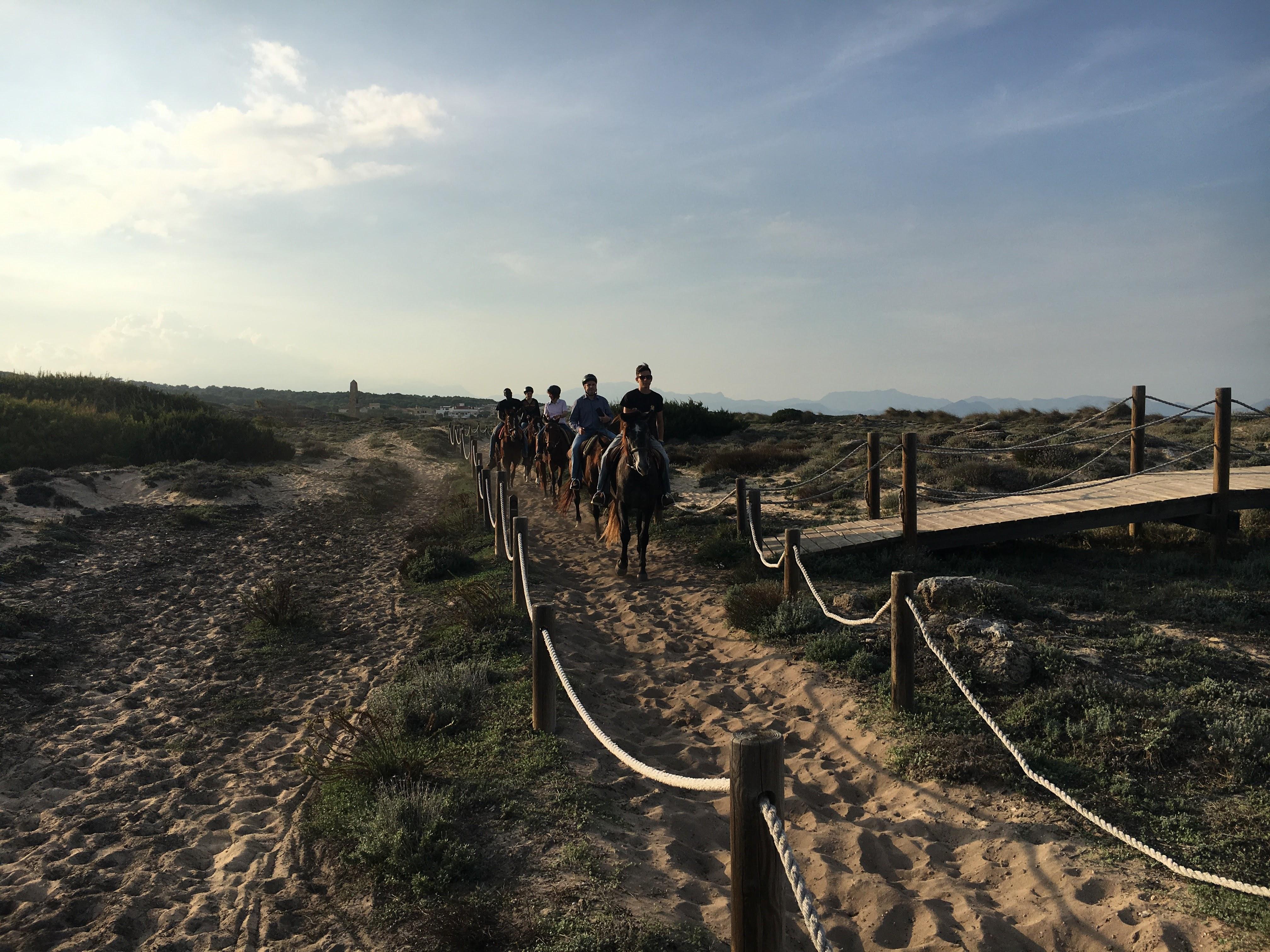 sacanova_excursio_organitzada_cavalls_corredorinterdunar2